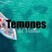 Temones del Verano von Various Artists