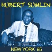 New York 95 by Hubert Sumlin