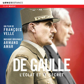 De Gaulle, l'eclat et le secret by Armand Amar