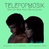 Why Oh Why de Telepopmusik