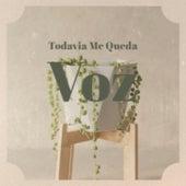Todavia Me Queda Voz by Mickey Gilley, Orlando Contreras, Fausto Papetti, Lola Flores, Ibrahim Ferrer, Trio Siboney, Kathy Kirby, The Four Aces, Los Llopis