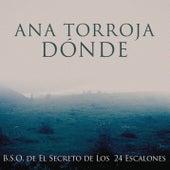Donde de Ana Torroja
