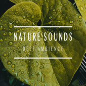 Deep Ambience von Nature Sounds (1)