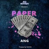 Paper de Ang