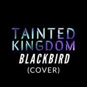 Blackbird de Tainted kingdom