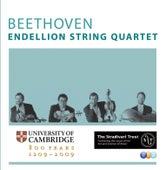 Beethoven : Complete String Quartets, Quintets & Fragments by Endellion String Quartet