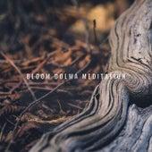 Bloom Dolma Meditation by Spa Music (1)