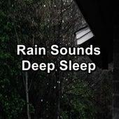 Rain Sounds Deep Sleep by Sleep Music (1)