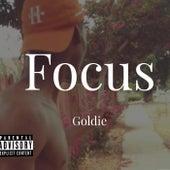 Focus fra Goldie