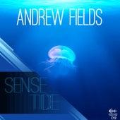 Sense Tide von Andrew Fields