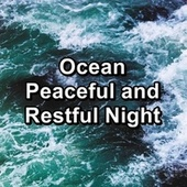 Ocean Peaceful and Restful Night von Massage Music