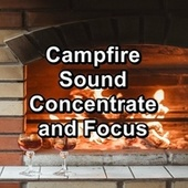 Campfire Sound Concentrate and Focus by S.P.A