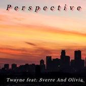 Perspective de T-Wayne