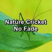 Nature Cricket No Fade de The Crickets