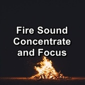 Fire Sound Concentrate and Focus by Spa Relax Music