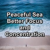 Peaceful Sea Better Focus and Concentration de Ocean Waves (1)