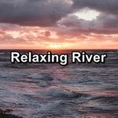 Relaxing River von Massage Music