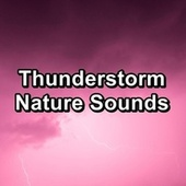 Thunderstorm Nature Sounds by Sleep
