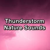 Thunderstorm Nature Sounds von Sleep