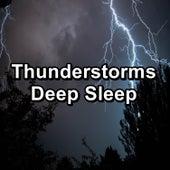 Thunderstorms Deep Sleep de Sounds Of Nature