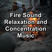Fire Sound Relaxation and Concentration Music de Ocean Waves (1)