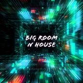 Big Room n House von Various Artists