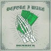 Before I Wake de Demrick