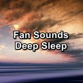 Fan Sounds Deep Sleep by White Noise Pink Noise