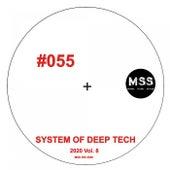 System of Deep Tech 2020, Vol. 8 (Mss0552020) de Various Artists