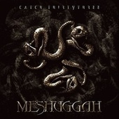 Catch Thirty Three by Meshuggah
