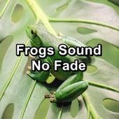 Frogs Sound No Fade von Nature Sounds (1)