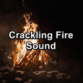 Crackling Fire Sound by S.P.A
