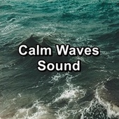 Calm Waves Sound by Intense Calm