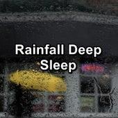 Rainfall Deep Sleep de Sounds Of Nature