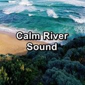 Calm River Sound by Intense Calm