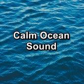 Calm Ocean Sound di Lullabies for Deep Meditation