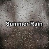 Summer Rain by Deep Sleep Meditation