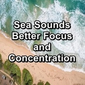 Sea Sounds Better Focus and Concentration by Spa Music (1)