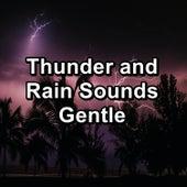 Thunder and Rain Sounds Gentle by Deep Sleep Meditation