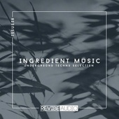 Ingredient Music, Vol. 38 van Various Artists