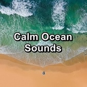Calm Ocean Sounds von Alpha Waves
