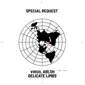 Delicate Limbs (Special Request Remix) de Virgil Abloh