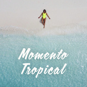 Momento Tropical von Various Artists