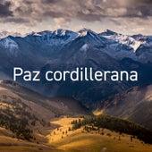 Paz Cordillerana de Various Artists