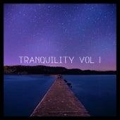 Tranquility, Vol. 1 di Various Artists