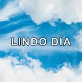 Lindo Día de Various Artists