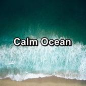 Calm Ocean von Sleep