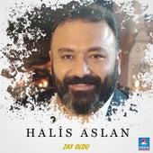 Zay Oldu von Halis Aslan
