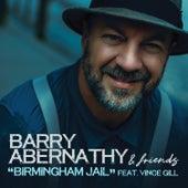 Birmingham Jail von Barry Abernathy