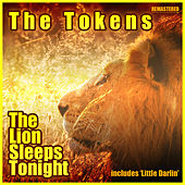 The Lion Sleeps Tonight de Kool & the Gang